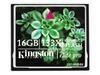 金士顿高速CF卡 133X(16GB